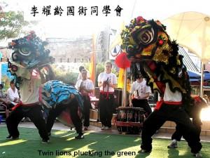 Li Iu Ling Choy Lee Fut Traditional Lion Dance